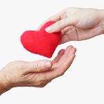 dłoń młodej osoby podającej materiałowe czerwone serce dłoni należącej do seniora